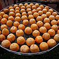 新竹 - 柿餅節