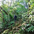 【桃園。大溪】古樸山徑綠意盎然。 編號23小百岳~溪洲山 577M