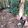 【台中。和平】谷關七雄入門款。 唐麻丹山 1305M