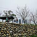 【新北。樹林】趣味檢小百岳。編號16小百岳大棟山405M