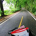 【台中。石岡】追風趣~健走騎乘兩相宜。東豐自行車綠廊