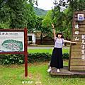 【花蓮。萬榮】風華絕代的林業歷史。 林田山林業文化園區