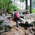 【台中。和平】不是普通的陡坡。 捎來步道