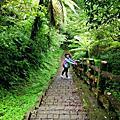 【新北。石碇】清悠山林。 編號17小百岳二格山678M