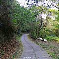 【台中。豐原】悠靜的秘境步道。 三崁頂健康步道