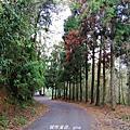 【南投。魚池】親民的賞景步道。 小百岳集起來。 編號49小百岳~貓囒山