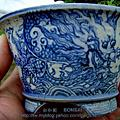 安仔的日本盆鉢收藏 (巳售出)