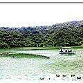 宜蘭冬山[景點]~梅花湖