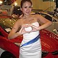 2013台茂Hyundai汽車展示