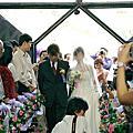 提歐多&詩丹的婚禮