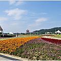 大佳河濱公園-遇到城堡花海樂遊日