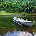 980906新山夢湖