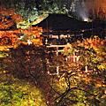 2008賞楓(2)宇治、高雄、伏見、清水夜楓