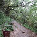 960929 -【陽明山區】絹絲步道、擎天崗環形步道、竹篙山