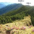 1050619~20【高山百岳】武陵四秀Day2 - 桃山、喀拉業山