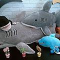 103.7.1鯊魚咬吐司