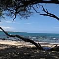 090530 陽光、海水、音樂、夏威夷-Day4