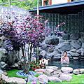 烏來-國際岩湯