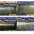 噴霧加溼、噴霧加濕、噴霧加濕設備、噴霧加溼系統、╭☆ 0932~540789 ☆╮╭☆ 0800~202050 ☆╮