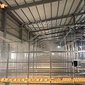 植物工廠噴霧設備、植物工場噴霧設備、植物工廠降溫系統設備╭☆ 0932~540789 ☆╮╭☆ 0800~202050 ☆╮