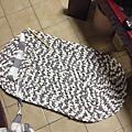 織一塊地毯