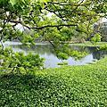 2014竹南峨眉湖大自然文化園區&十二寮風景區