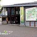 日本旅遊--大王山葵農場