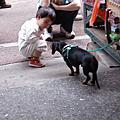20060211內灣薰衣草森林