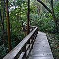 仁山植物園(步道)