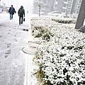2007北京