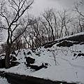 雪白中央公園