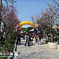 2015/03/01 彰化芬園櫻花區