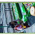 2007 1202 豐樂公園玩