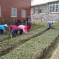永續農業應援團