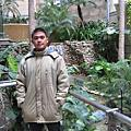 2008元旦