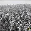 【世界玩不完】2010 溫哥華居遊日記vancouver