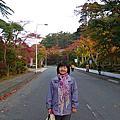 日本東北賞楓 ---花卷溫泉