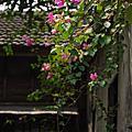 2014/08/07/..農曆7月11日..立秋