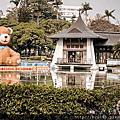 台中公園..泰迪熊