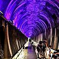 苗栗市景點(彩虹隧道)