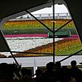 2010 Taipei Flora Expo- 爭艷館一二: 花之圓舞曲