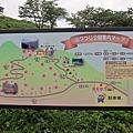 山つつじ公園