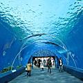 20100225_八景島sea paradise+mitsui outlet park