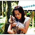 2008.10.18 綠光森林大溪花海