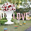 *~花居樂花坊~*1050101 大溪 大溪山水庭園餐廳 Ivan&Rita 紅金色典雅背板設計 婚禮佈置