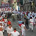 Pamplona 潘普洛納