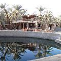 Siwa Oasis 西瓦綠洲