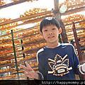 新竹親子景點/新竹親子遊-啟德重機械 煙波大飯店湖濱館 新埔柿餅 味衛佳柿餅觀光農場 新埔老街 新竹動物園