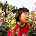 2021~2020 大台北景點/ 新北市台北市親子趴趴走 /室內親子景點