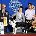 2012-10-14KCT畜犬賽
